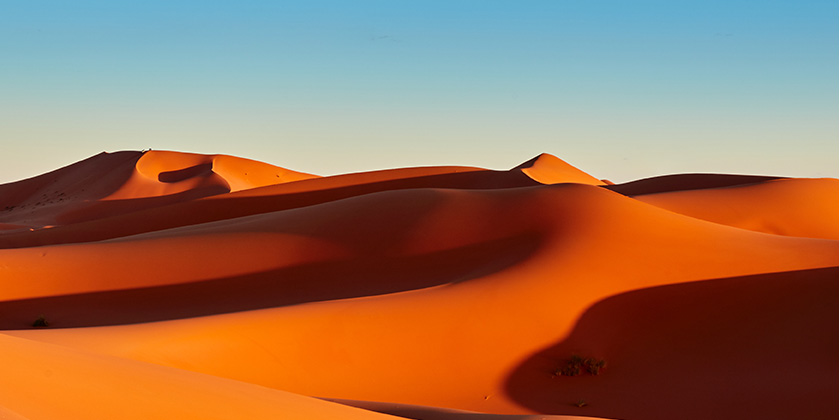 photo-environment-enclosure-desert.jpg