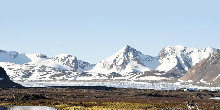 photo-environment-enclosure-tundra.jpg